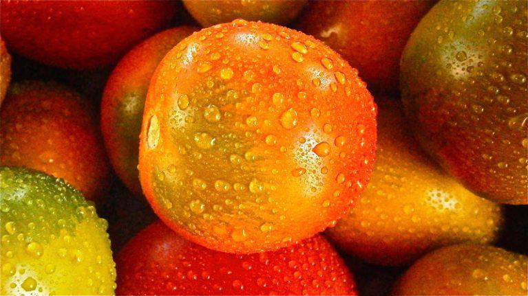 Целебные фрукты: из каких фруктов брать витамины