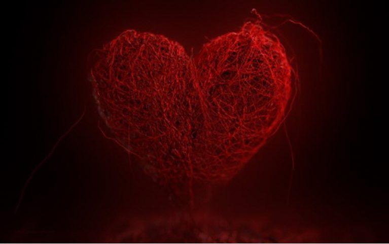 Украденное сердце