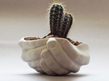 Самые оригинальные горшки и кашпо для комнатных растений (15 фото)