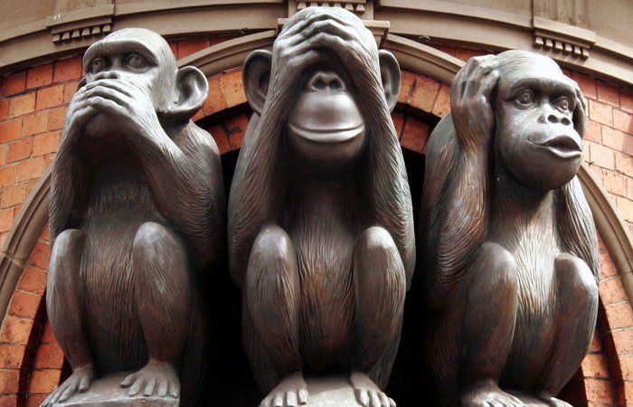 939082bfc1c721d490d15f3184ff80f8 - Мидзару, Кикадзару, Ивадзару: Почему три японскин обезьяны стали символом женской мудрости