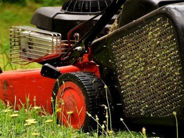 Лучшие газонокосилки и триммеры для газона: выбор ZOOM